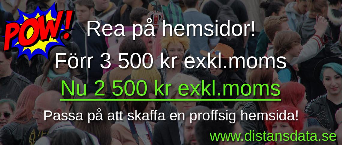 Skaffa en proffsig hemsida för 2 500 kr exkl.moms 1